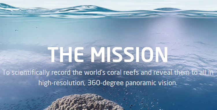 coral divers resort case analysis Free essay: coral divers resort business description coral divers resort (coral) is acting since 10 years on the niche industry of a rapidly growing sport.