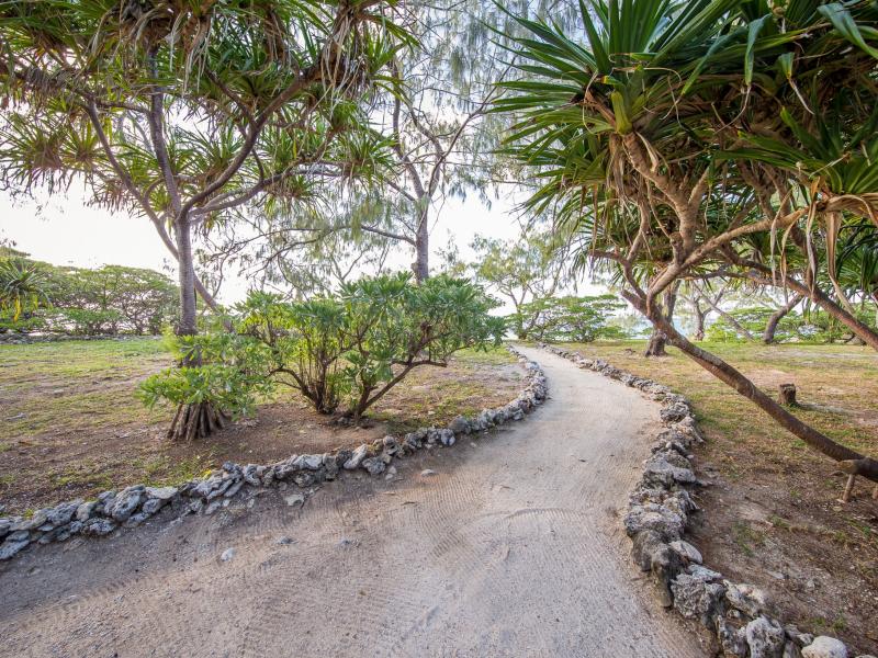 Walking-paths