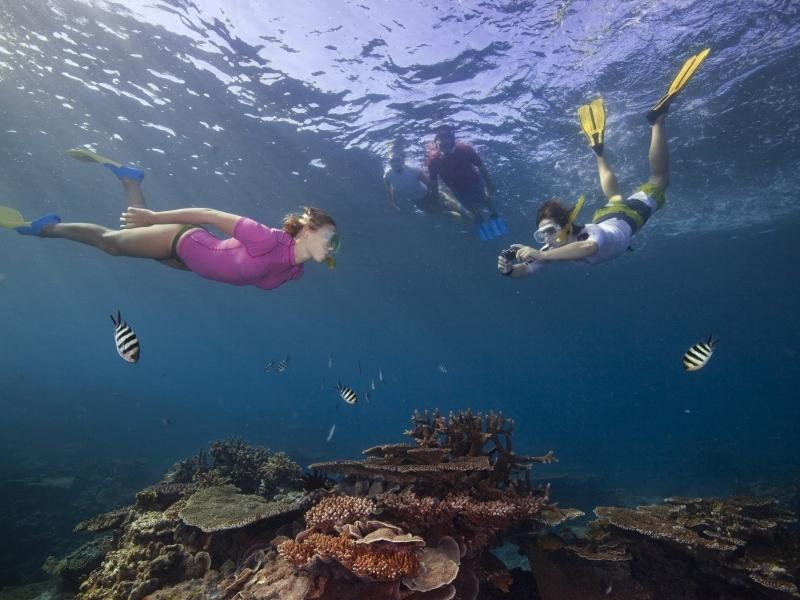 Admiring-healthy-coral-gardens-Tourism-Australia