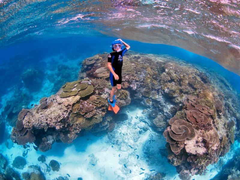 Discovering-the-magic-of-the-reef-www.mattguest.com_.au_