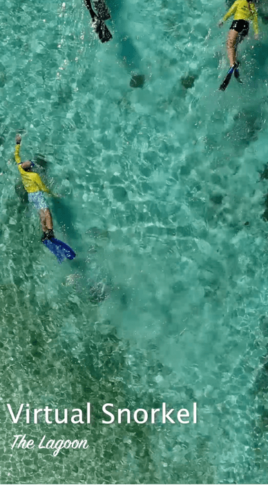 Lady Elliot Island Virtual Tour - Lagoon Snorkel